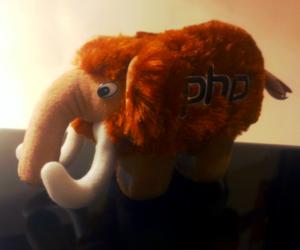 TrueNorth PHP Woolly Mammoth